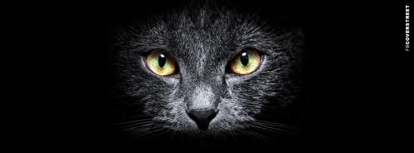 Suspicious Black Cat Facebook cover