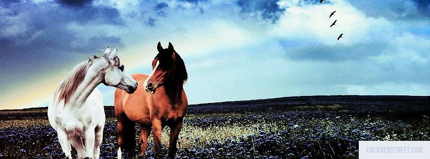 Horses Facebook Cover