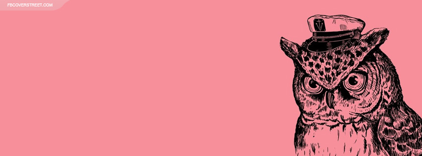 Peeking Owl Facebook cover
