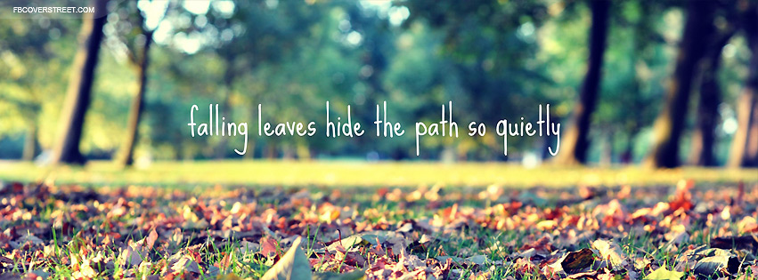 Falling Leaves Hide The Path Facebook Cover