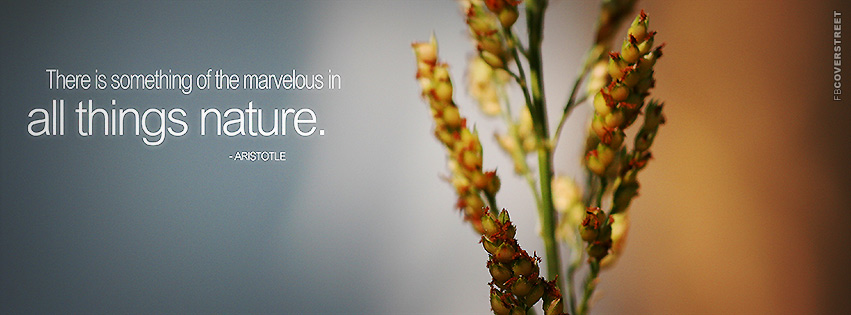 All Things Nature Aristotle Quote Facebook Cover Fbcoverstreetcom
