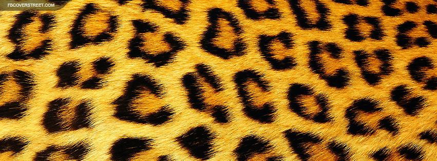 Nice leopard fur facebook cover fbcoverstreet nice leopard fur facebook cover voltagebd Choice Image
