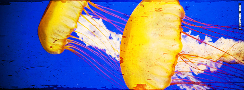 Jellyfish Swimming Grunge  Facebook cover