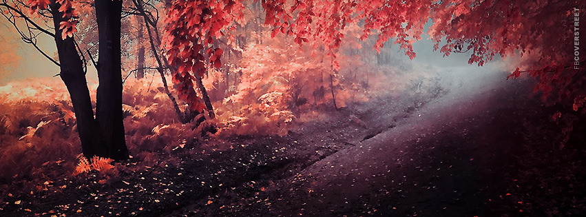 Pink Tree Walkway  Facebook Cover