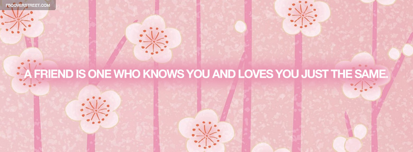 A Real Friend Quote Facebook Cover