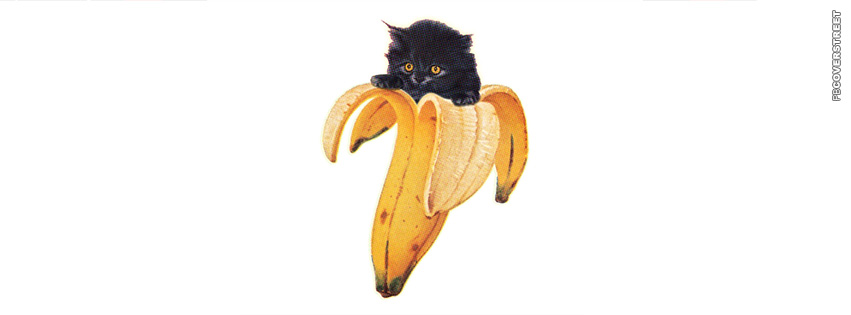 Banana Cat  Facebook cover