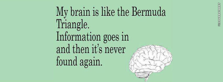 My Brain Is Like The Bermuda Triangle  Facebook cover