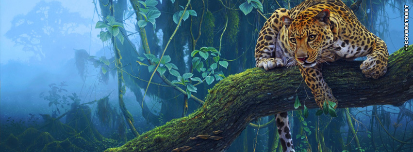 Leopard In The Jungle Photo  Facebook Cover
