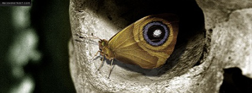 Butterfly Eye  Facebook cover