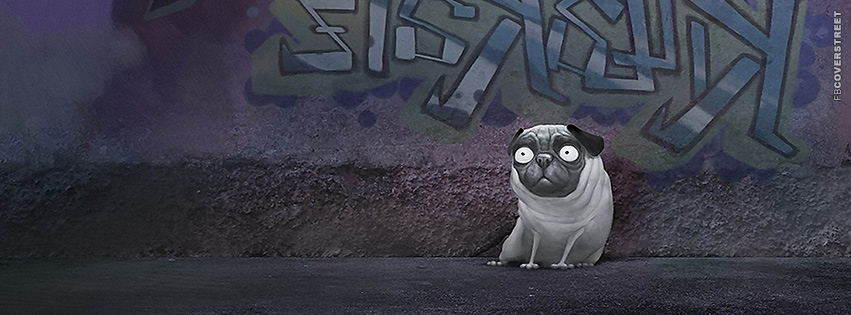 Paranoid Dog Art  Facebook Cover
