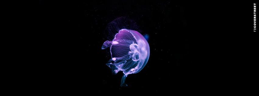 Purple and Blue Jellyfish  Facebook cover