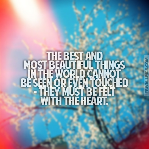 The Best and Most Beautiful Things Helen Keller Quote Facebook picture
